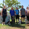 Therapy Dogs in Ellenbrook